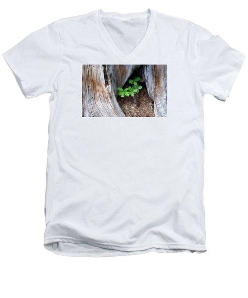 A New Start Men's V-Neck T-Shirt