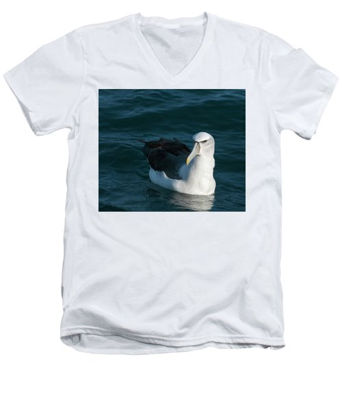 A Portrait Of An Albatross Men's V-Neck T-Shirt