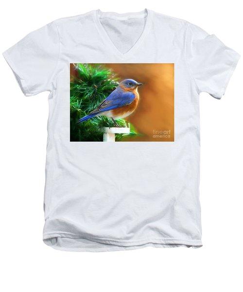 A Still Moment Men's V-Neck T-Shirt by Tina LeCour