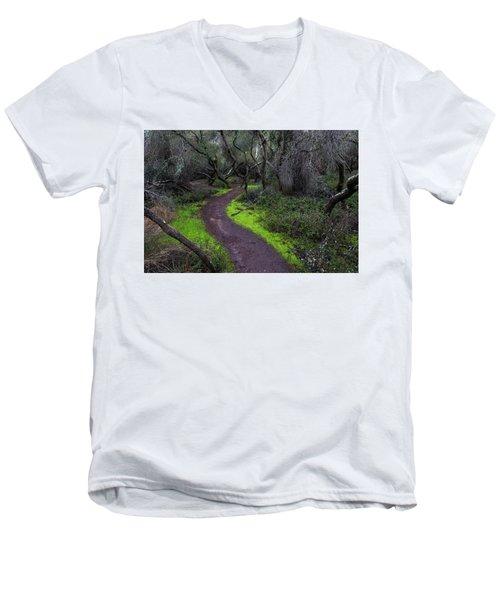 A Windy Path Men's V-Neck T-Shirt