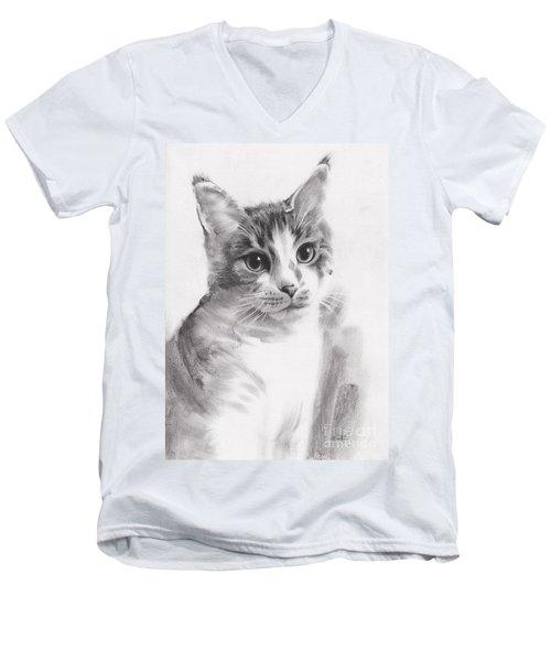 Abbie Men's V-Neck T-Shirt by Paul Davenport