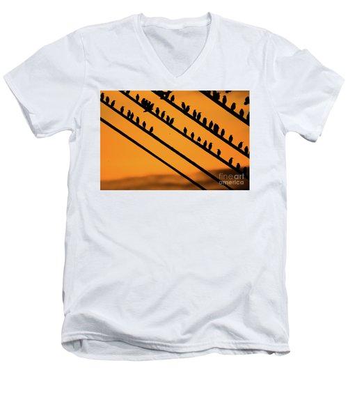 Aberystwyth Starlings At Dusk Men's V-Neck T-Shirt