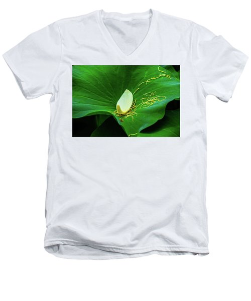 Abstract Leaves Of Green And Yellow Men's V-Neck T-Shirt