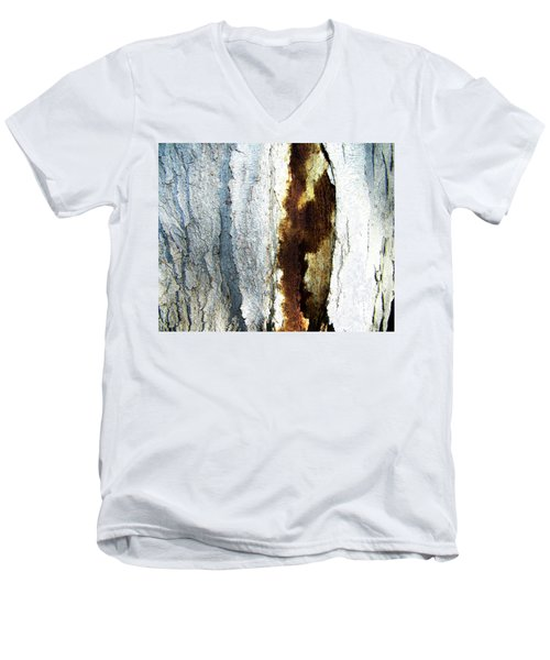 Men's V-Neck T-Shirt featuring the photograph Abstract One by Lenore Senior