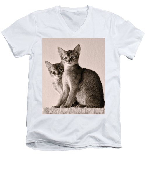 Abyssinian Kittens Men's V-Neck T-Shirt