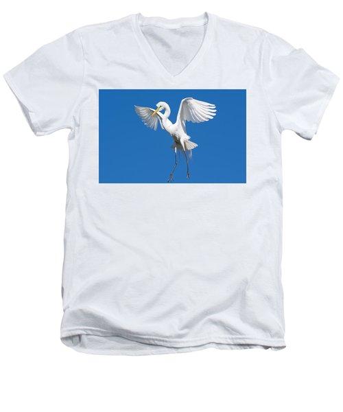 Aerial Ballet Men's V-Neck T-Shirt