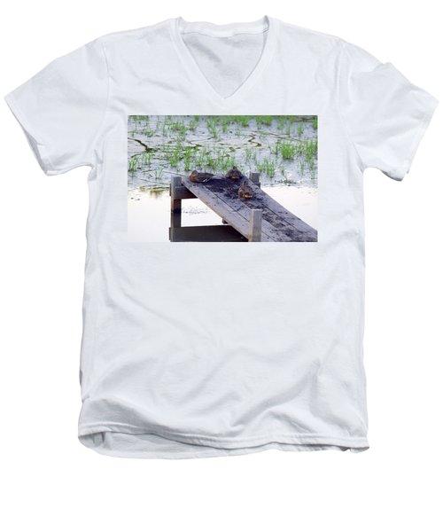 Afternoon Rest Men's V-Neck T-Shirt