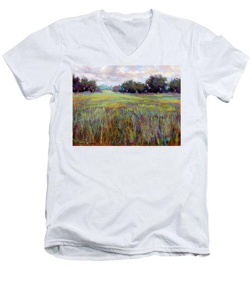 Afternoon Serenity Men's V-Neck T-Shirt