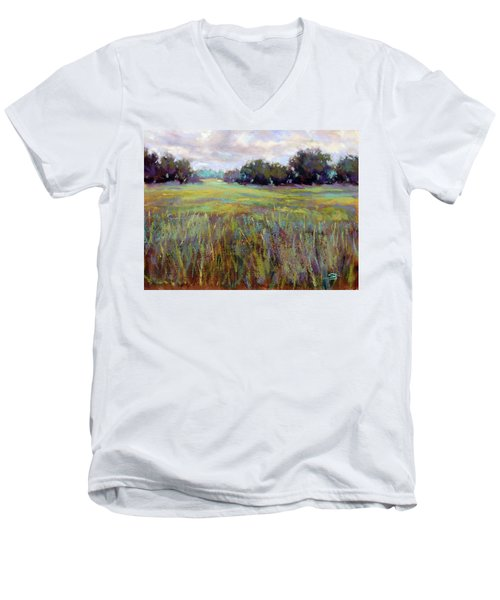 Afternoon Serenity Men's V-Neck T-Shirt