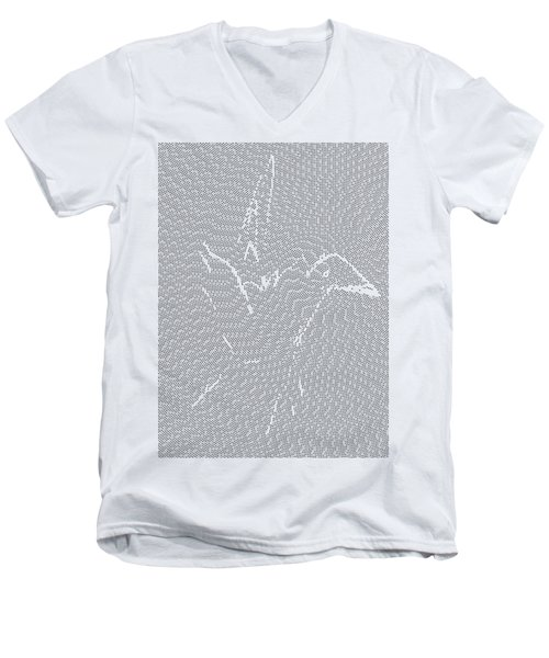 Aibird Men's V-Neck T-Shirt