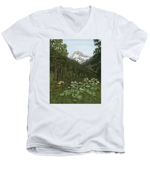 Alaskan Mountains Men's V-Neck T-Shirt