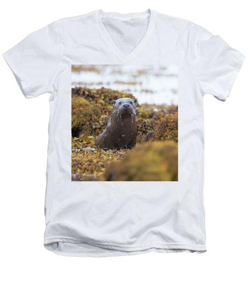 Alert Female Otter Men's V-Neck T-Shirt