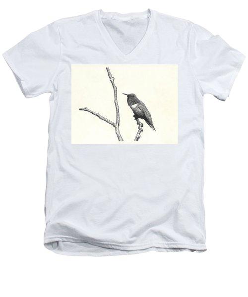 Allen's Hummingbird Men's V-Neck T-Shirt
