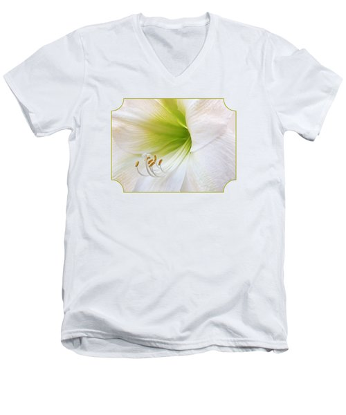 Alluring Amaryllis Men's V-Neck T-Shirt by Gill Billington