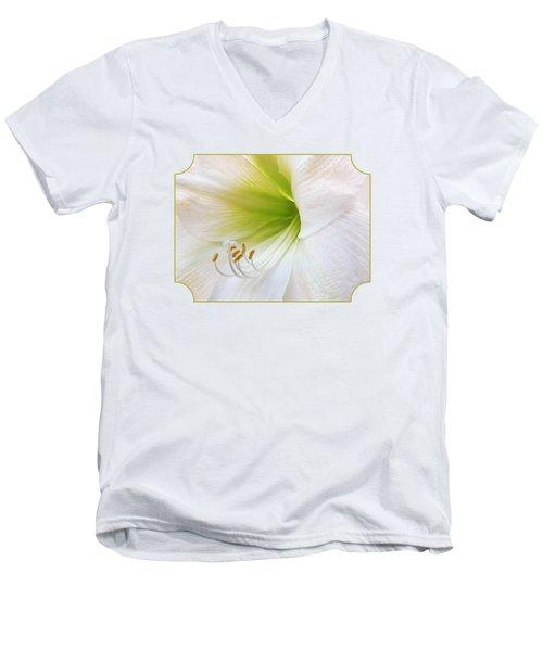 Alluring Amaryllis Men's V-Neck T-Shirt