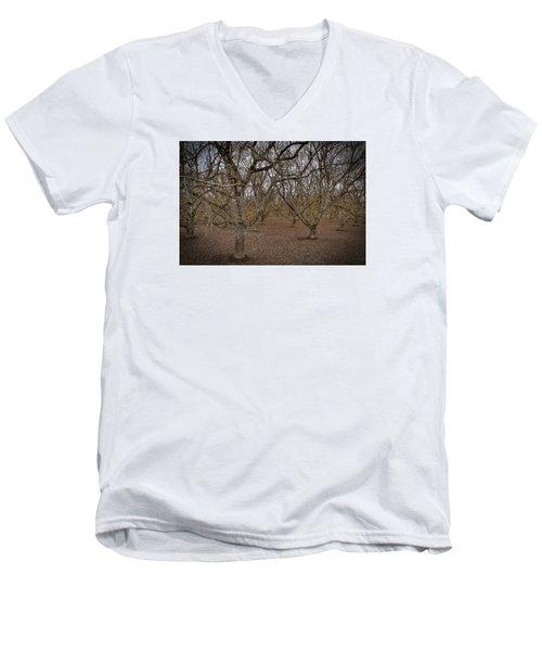 Almond Orchard Men's V-Neck T-Shirt