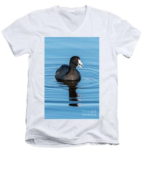 American Coot Men's V-Neck T-Shirt