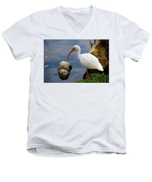 American White Ibis Men's V-Neck T-Shirt