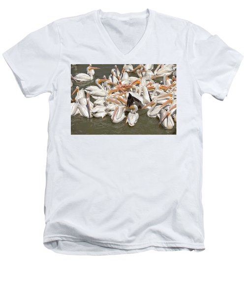 American White Pelicans Men's V-Neck T-Shirt by Eunice Gibb