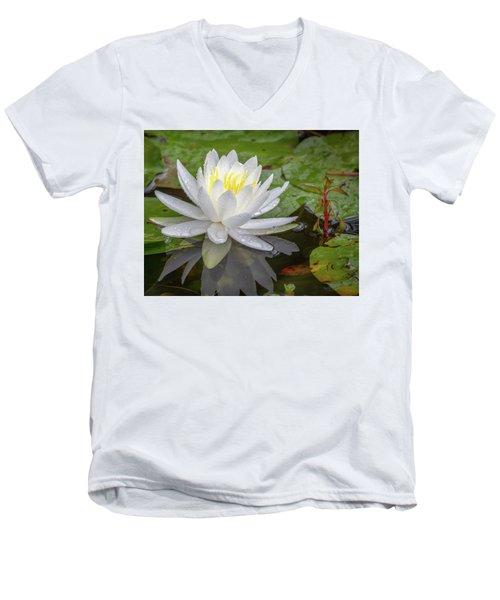 American White Water Lily Men's V-Neck T-Shirt