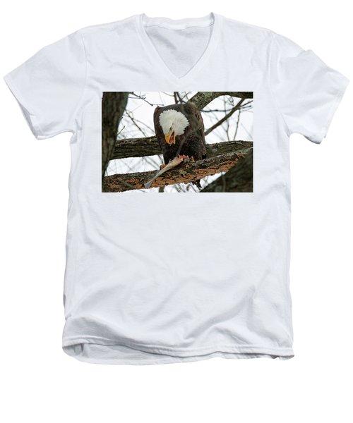 An Eagles Meal Men's V-Neck T-Shirt by Brook Burling