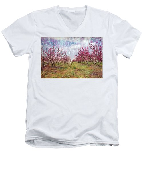 An Orchard In Blossom In The Golan Heights Men's V-Neck T-Shirt