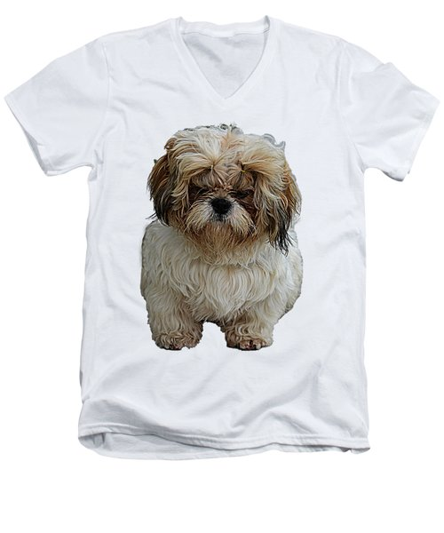 Angry Dog I Men's V-Neck T-Shirt