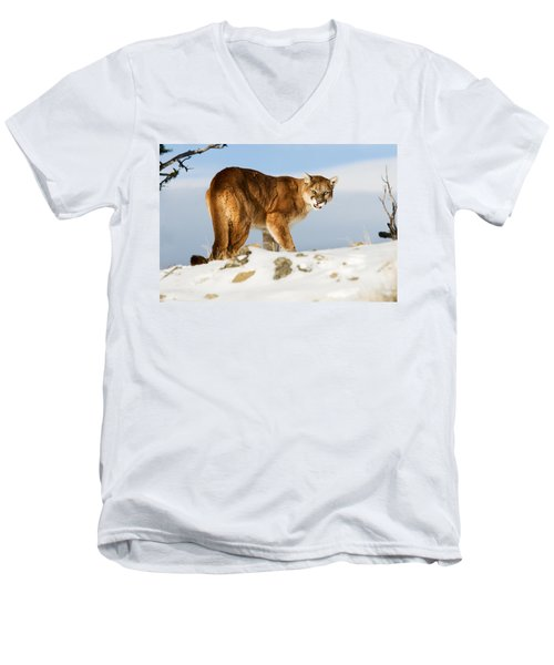 Angry Mountain Lion Men's V-Neck T-Shirt