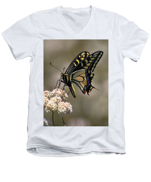 Anise Swallowtail Men's V-Neck T-Shirt