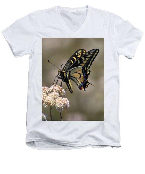 Anise Swallowtail Men's V-Neck T-Shirt
