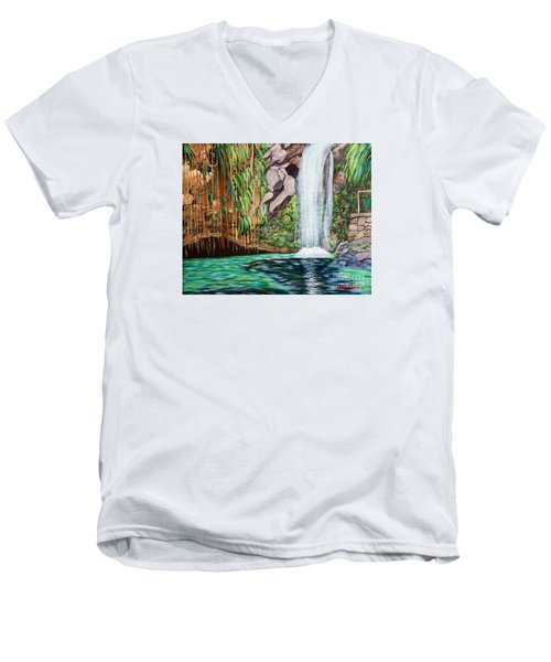 Annandale Waterfall Men's V-Neck T-Shirt