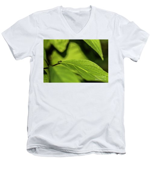 Men's V-Neck T-Shirt featuring the photograph Ant Life by JT Lewis