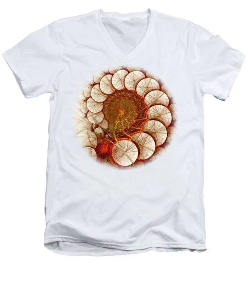 Apple Cinnamon Men's V-Neck T-Shirt