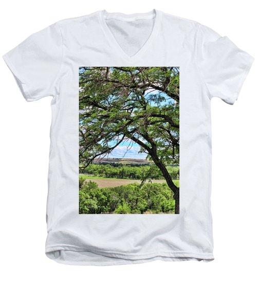 Arbor Vista Men's V-Neck T-Shirt by Sylvia Thornton