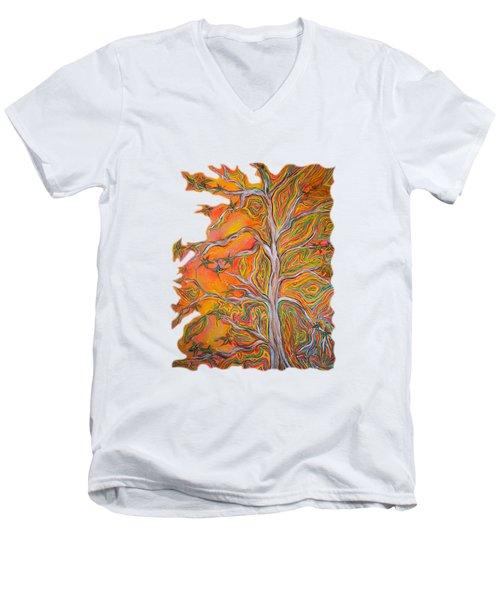 Nature's Energy Men's V-Neck T-Shirt by Deborha Kerr