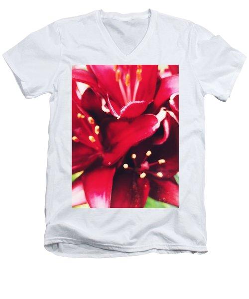 Asiatic Lilies Men's V-Neck T-Shirt