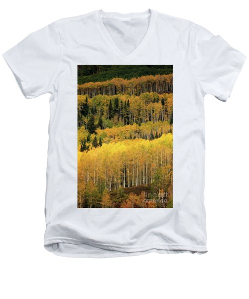 Aspen Groves Men's V-Neck T-Shirt