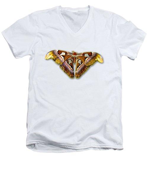 Atlas Moth 2 Sehemu Mbili Unyenyekevu Men's V-Neck T-Shirt