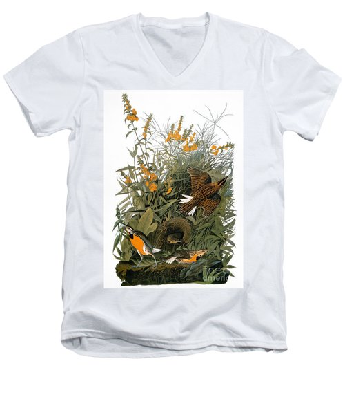 Audubon: Meadowlark Men's V-Neck T-Shirt