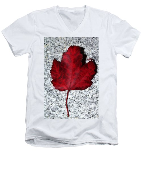 Autum Maple Leaf 1 Men's V-Neck T-Shirt