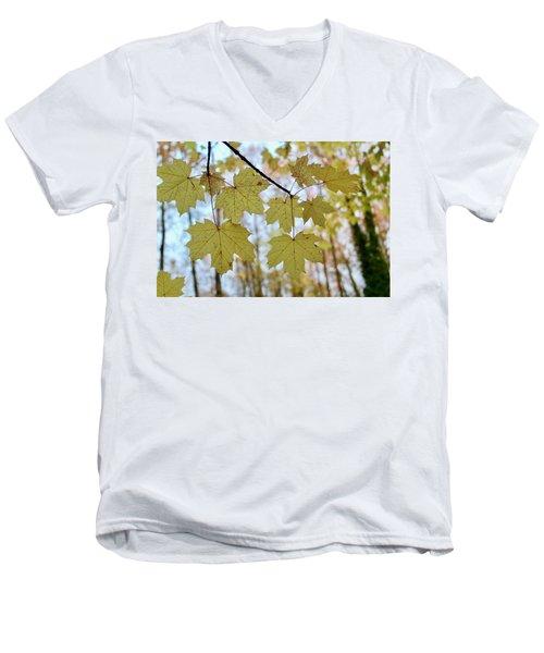 Autumn Beauty Men's V-Neck T-Shirt