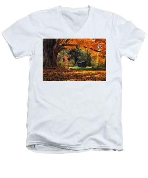 Autumn Brilliance Men's V-Neck T-Shirt