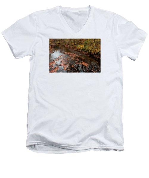 Autumn Carpet 003 Men's V-Neck T-Shirt