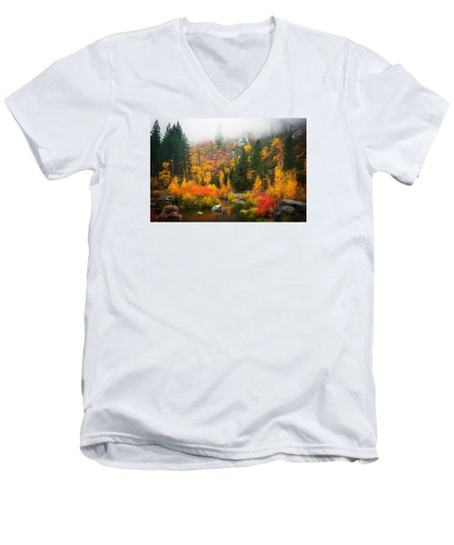 Autumn Colors Symphony Men's V-Neck T-Shirt