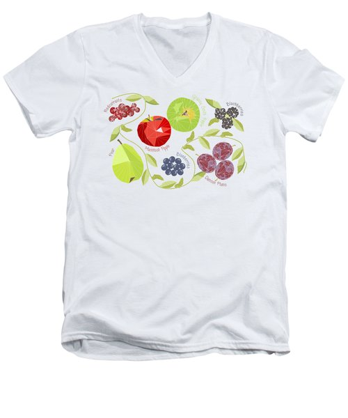Autumn Fruit Geodesic Men's V-Neck T-Shirt