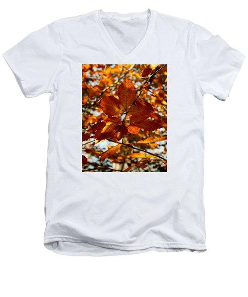 Men's V-Neck T-Shirt featuring the photograph Autumn Leaves by Karen Harrison