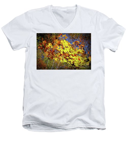 Autumn Light Men's V-Neck T-Shirt by Tatsuya Atarashi