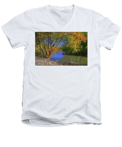 Autumn On The North Raccoon Men's V-Neck T-Shirt