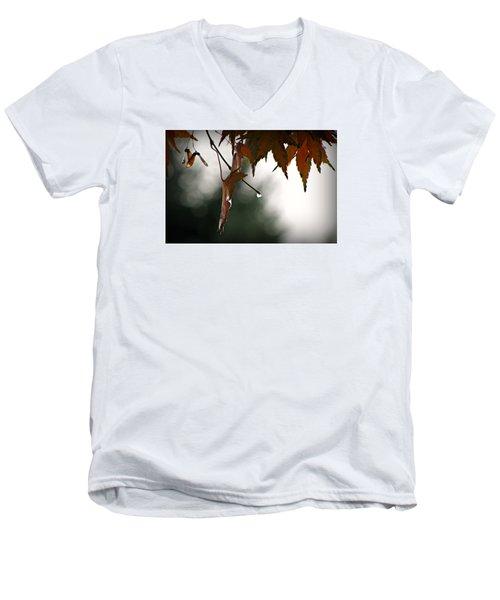 Autumn Raindrops Men's V-Neck T-Shirt