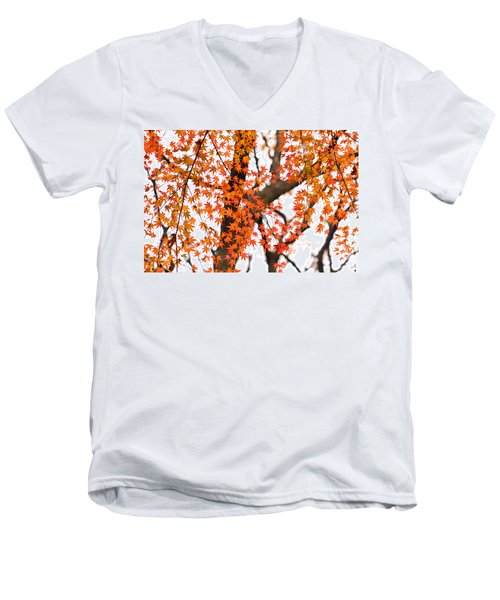 Autumn Red Leaves On A Tree   Men's V-Neck T-Shirt by Ulrich Schade